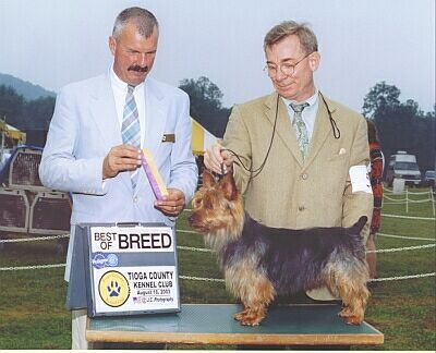 Rooney won Best of Breed at the Tioga Show in 2003